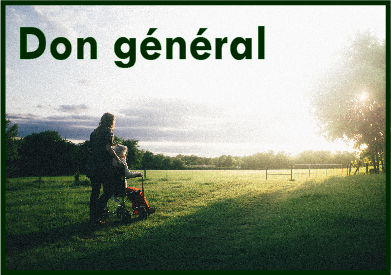 Bouton_-_Don_g_n_ral.jpg